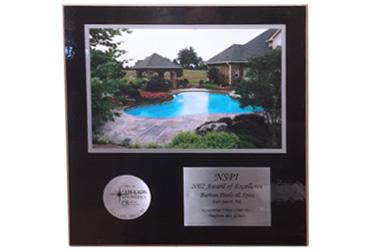 2002 NSPI Award of Excellence